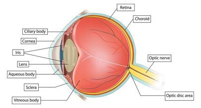 schmink litteken oog